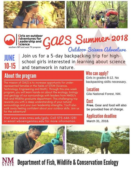 GALS Summer Opportunity