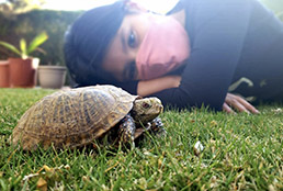 Image of student and turtle